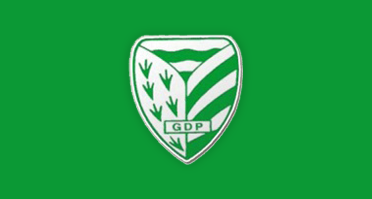 Grupo Desportivo Pelariga